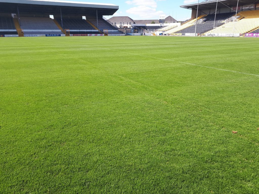 overseeding completed after drainage in Nowlan Park